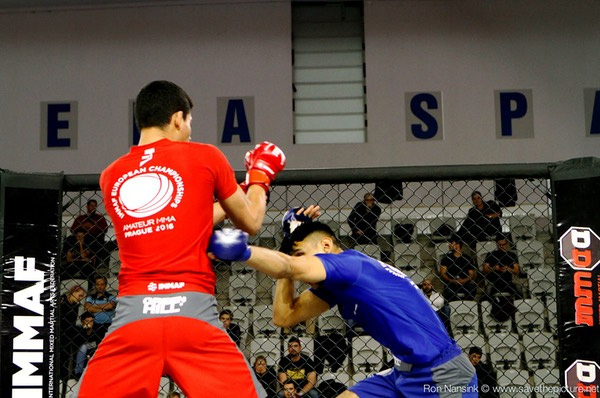 IMMAF MMA action photos 2