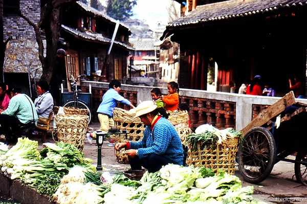 Ljijiang Naxi women clean vegetables