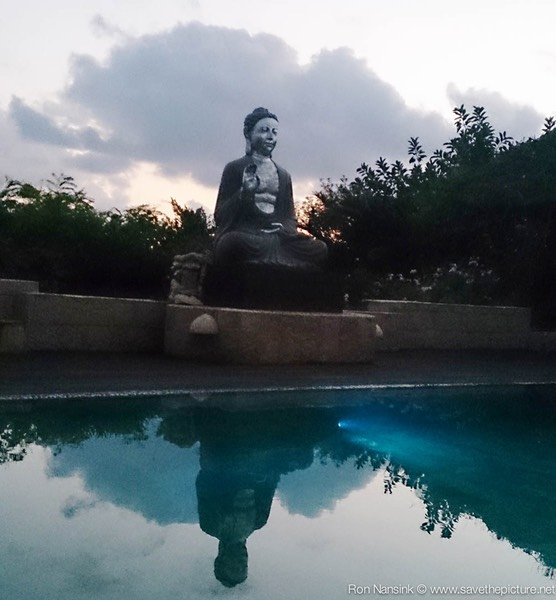 Ibiza retreats Natural Tuning Buddha at the pool